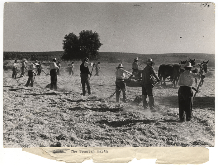 [Agricultural workers in a field of hay, Aragón front, Spain ]