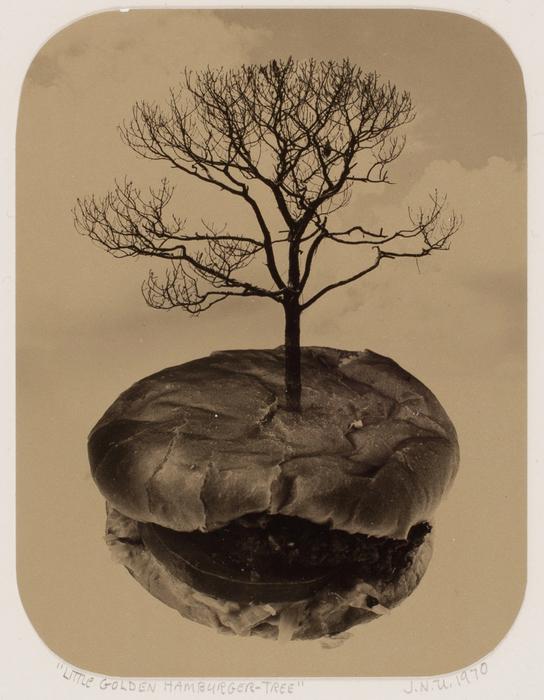 Little Golden Hamburger Tree