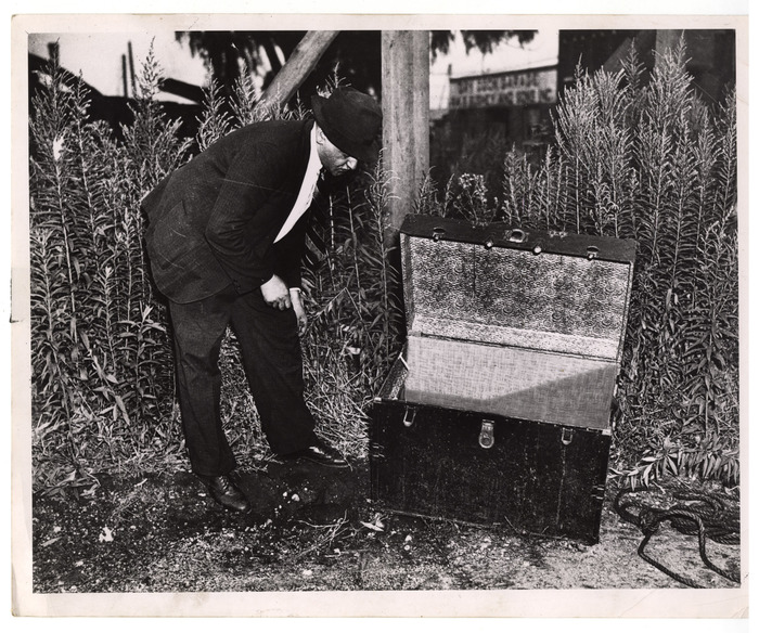 [Weegee inspecting trunk that contained body of William Hessler, who had been stabbed to death, Brooklyn]