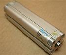 Festo Electric ADVU-20-100-P-A