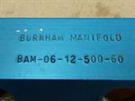 Burnham BAM-06-12-500-60
