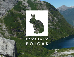 Proyecto Poicas, Documental