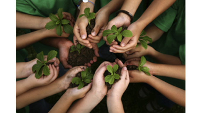 Become Green, Plant a Tree!