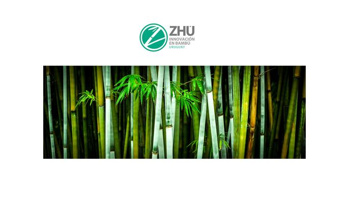 ZHÚ Bambú - recurso del futuro