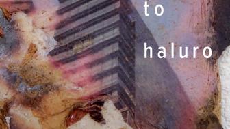 Proyecto Haluro