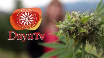 1ra Temporada DayaTV