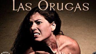 Proyecto Las Orugas