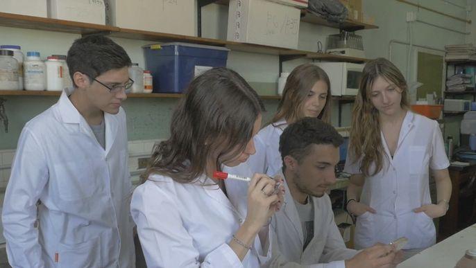 Skin cancer detector