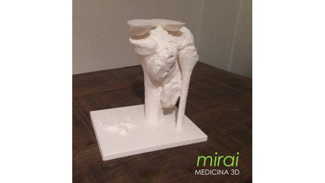 Mirai Medicina 3D