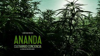 Documental Ananda