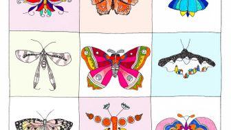 La ronda de la mariposa