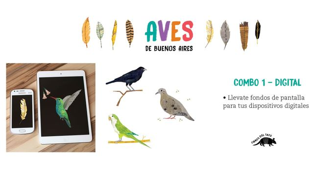 Birds of Buenos Aires