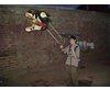 Flight of my dinosaur