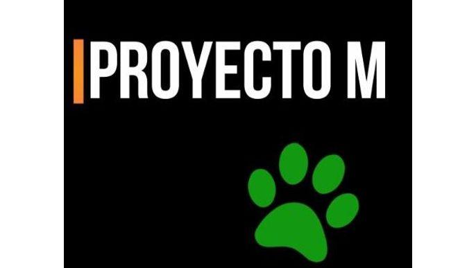 Proyecto M- Caracas a Santiago