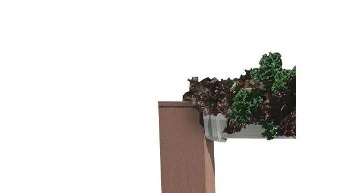 Huertas Hidroponicas