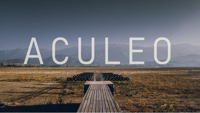 ACULEO