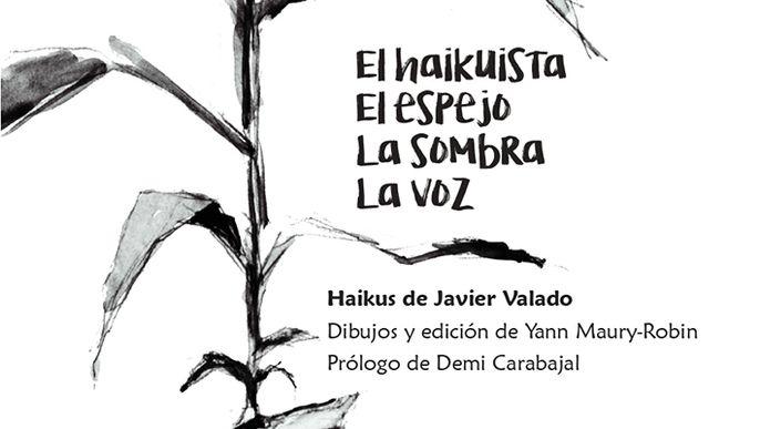 Libro de haikus