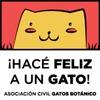¡Hacé feliz a un gato!