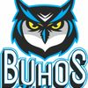 Buhos All Stars
