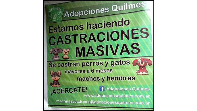 Refugio Adopciones Quilmes ONG