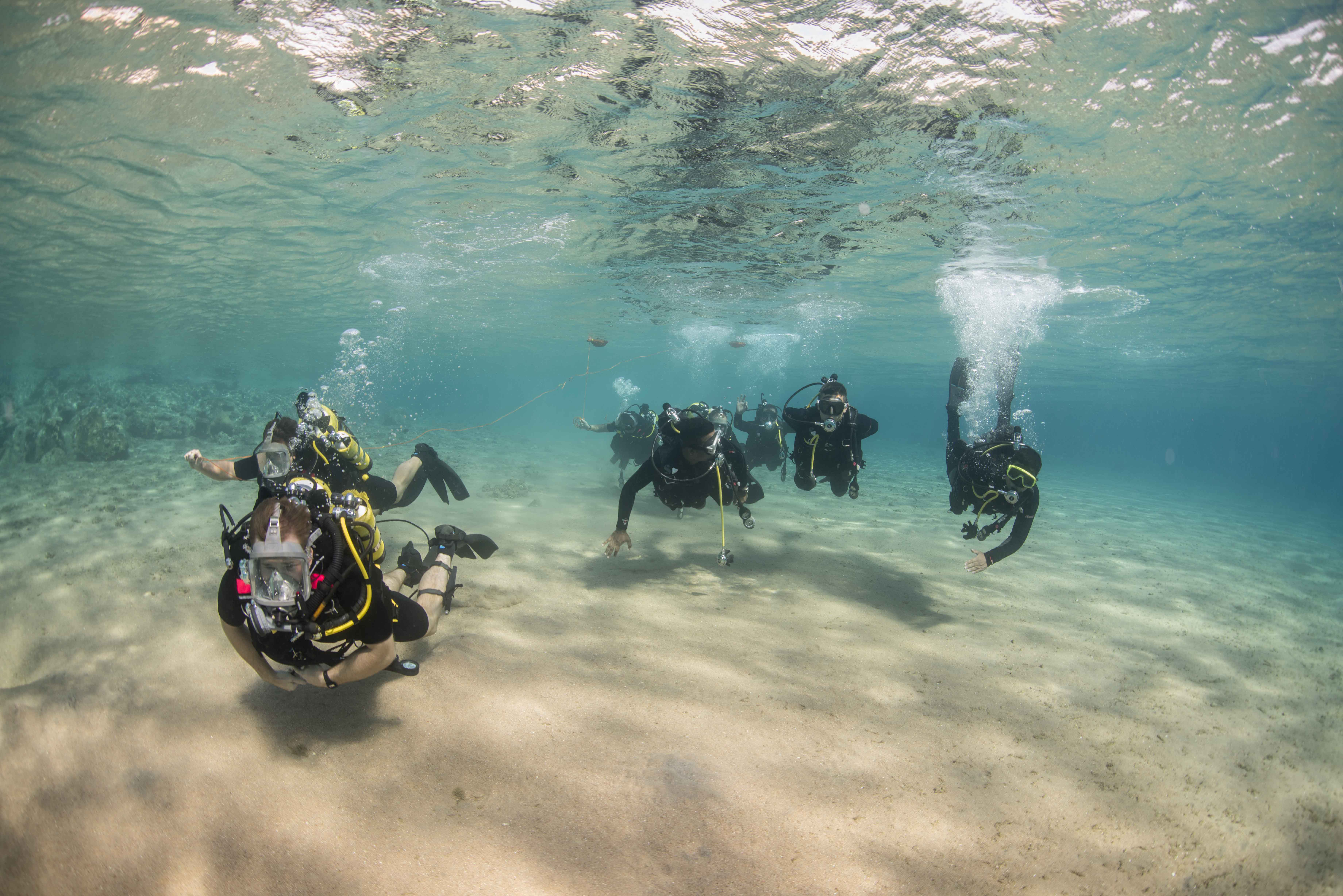 GULF OF AQABA (Oct. 29, 2014) Clearance divers from Fleet Diving Unit 3, assigned to Task Group 523.3, and divers from the Royal Naval Force of Jordan, conduct a search dive while participating in International Mine Countermeasures Exercise (IMCMEX). IMCMEX includes navies from 44 countries whose focus is to promote regional security through mine countermeasure operations in the U.S. 5th Fleet area of responsibility. (U.S. Navy photo by Mass Communication Specialist 3rd Class Daniel Rolston/Released)
