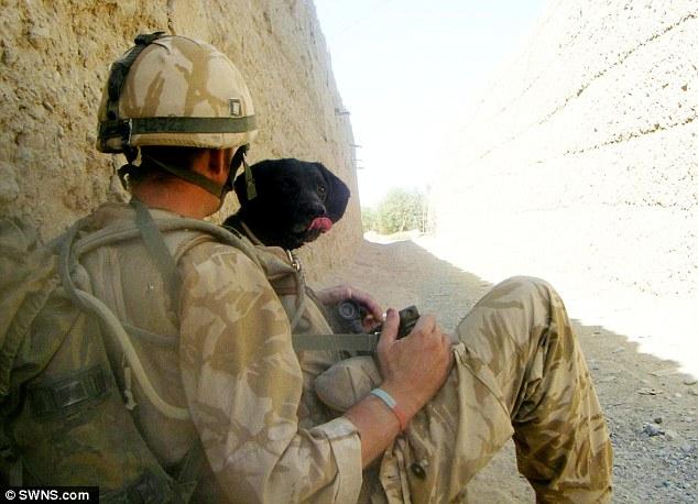 Military Dog Afghanistan Image - The SITREP Military Blog