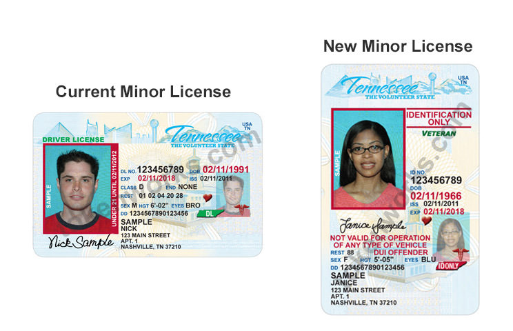 New Tennessee driver's license for minors