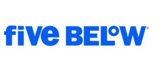 senior director financial planning analysis five below