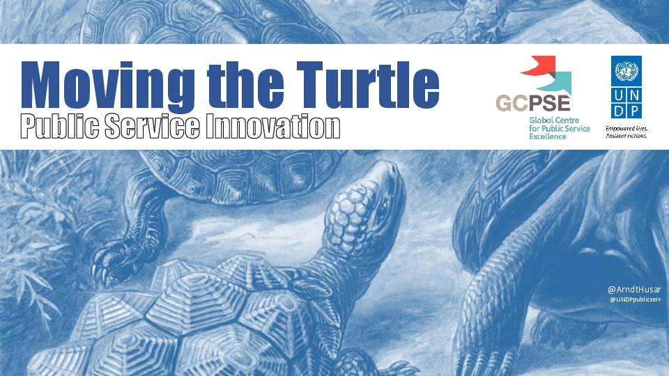 Moving the Turtle – Public Service Innovation