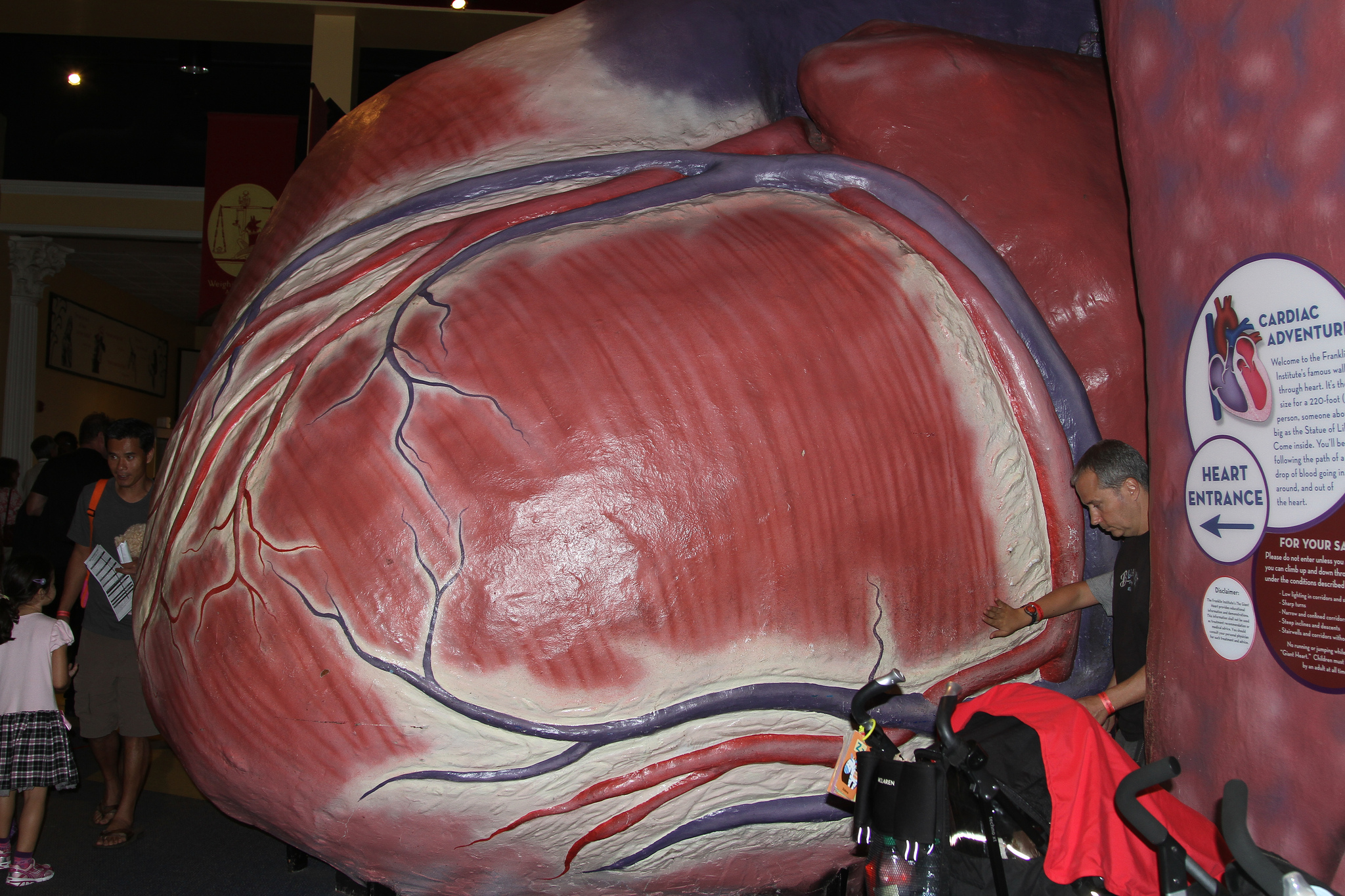"""Franklin Institute Heart"" by Jim, the Photographer via Flickr Creative Commons"