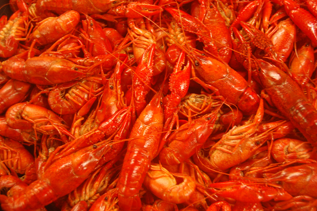 """Fresh Louisiana Crawfish"" by The Food Group via Flickr Creative Commons"