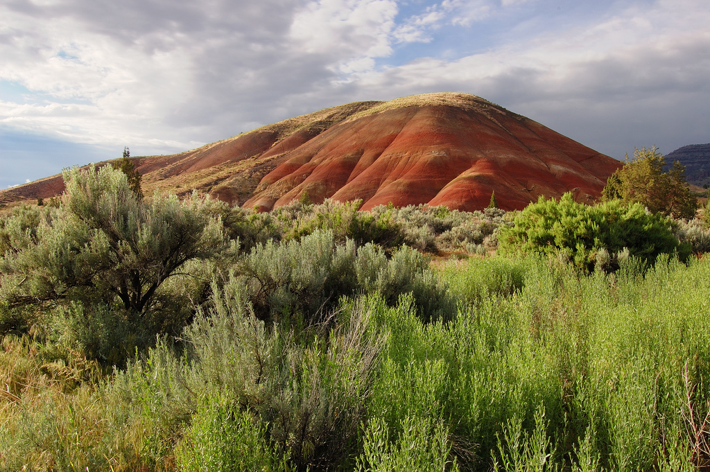 """Painted Hills"" by Tim Gallivan via Flickr Creative Commons"