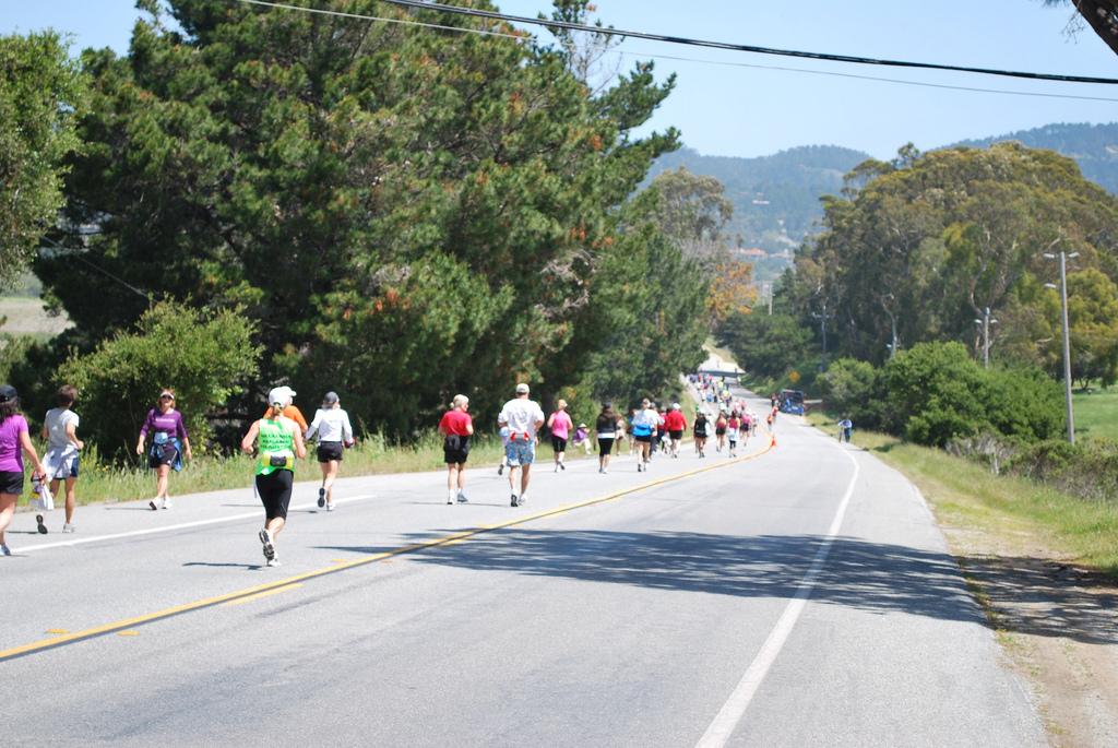 Photo Credit: See Monterey