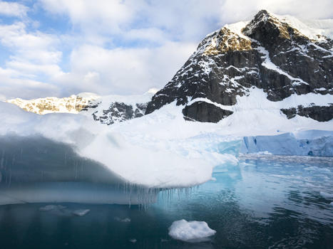 Featured antarctica