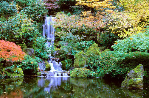 Photo via Travel Portland