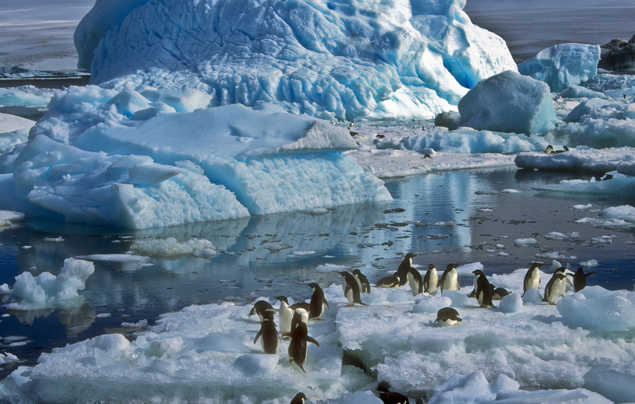 Traveling To Antarctica From Australia