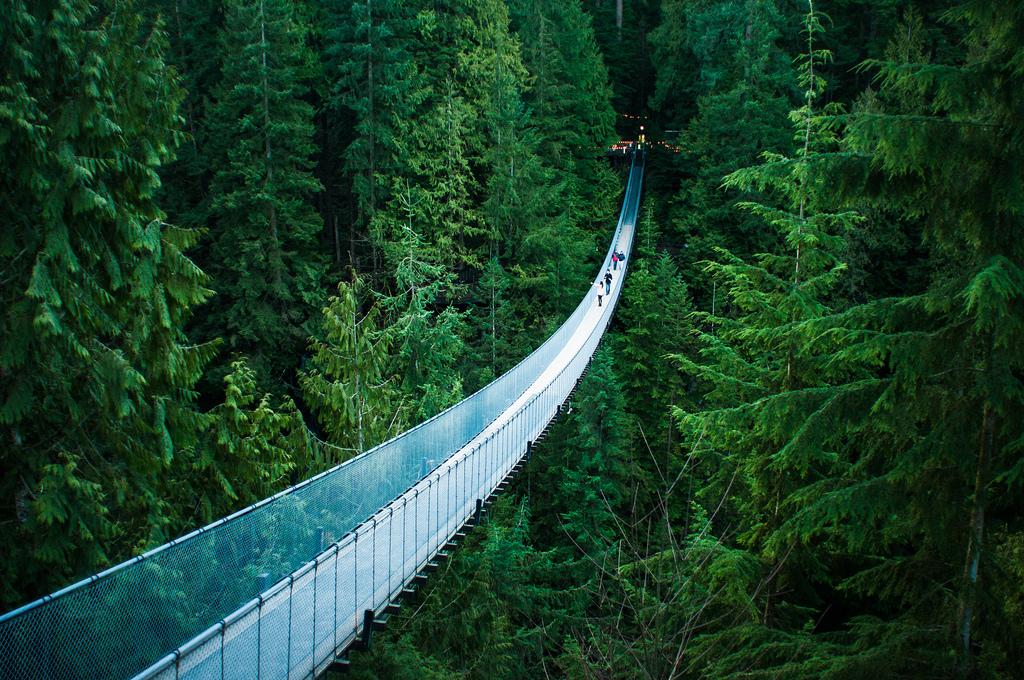 """Capilano Suspension Bridge"" by Michelle Lee via Flickr Creative Commons"