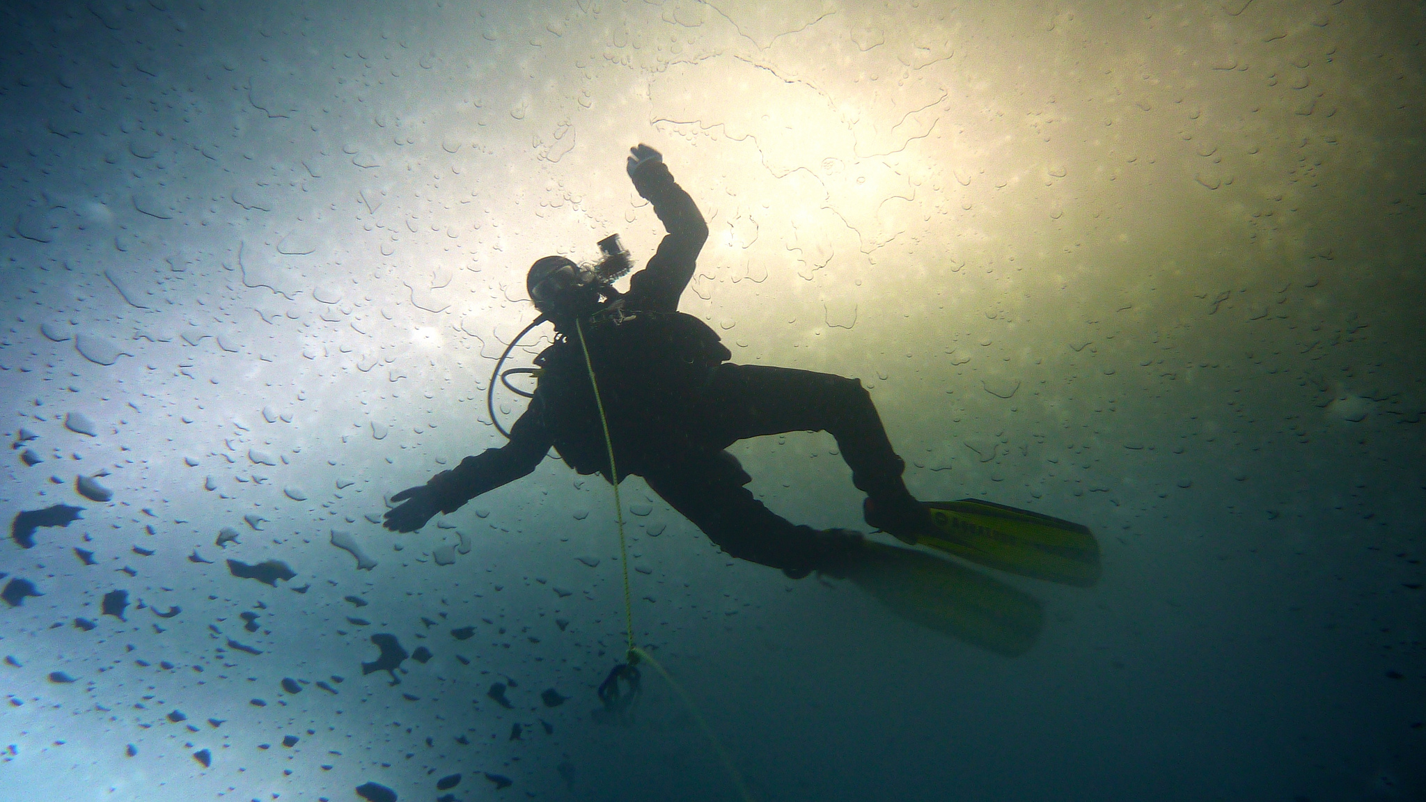 """""""This is Why we Dive!"""" by David Haberthür via Flickr Creative Commons"""