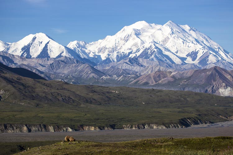 Photo Credit: Denali National Park