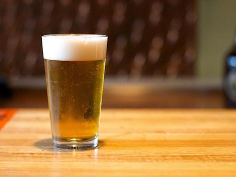 Beer alanlevine