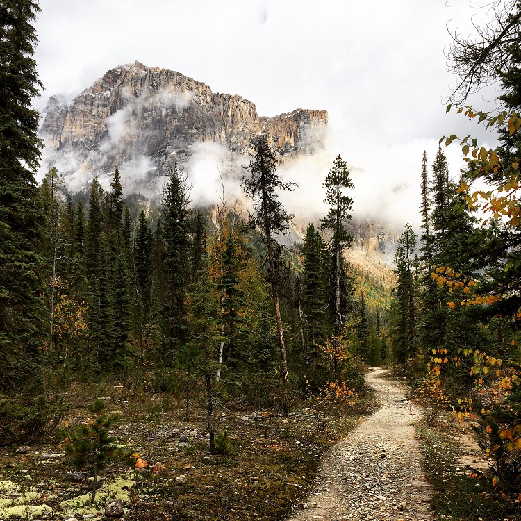 Yoho National Park, photo by Megan Hill