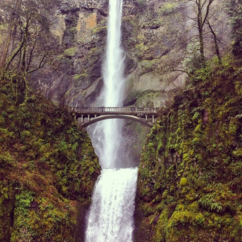 Multnomah Falls, photo by Megan Hill