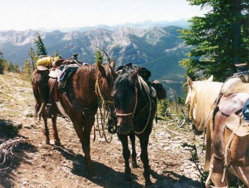Photo courtesy of Mills Wilderness Adventures