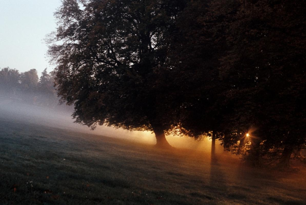"""Mired in Fog Right before Sunrise"" by Franek N via Flickr Creative Commons"