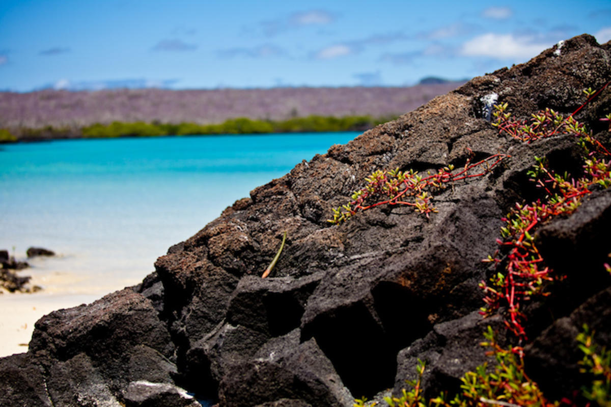 """Galapagos Islands-91"" by Peri Apex via Flickr Creative Commons"