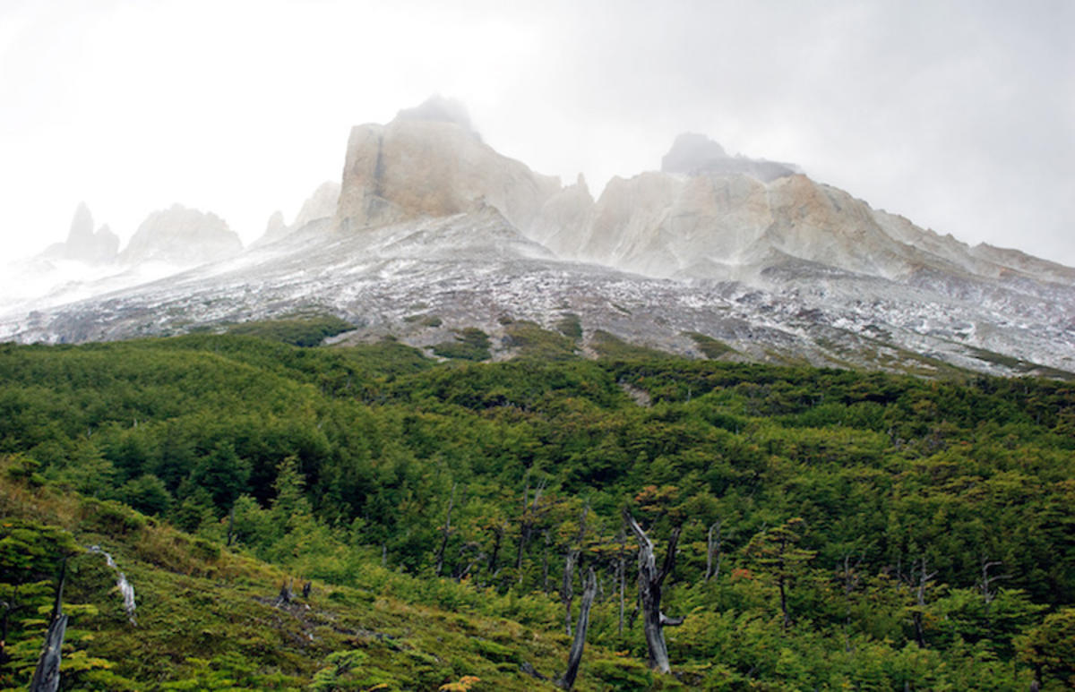 """Torres del Paine National Park"" by Reeve Jolliffe via Flickr Creative Commons"