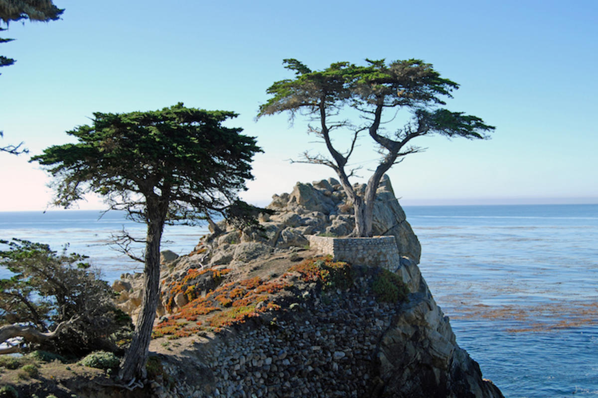 """""""17 Mile Drive_2011 10 17_0110"""" by Harvey Barrison via Flickr Creative Commons"""