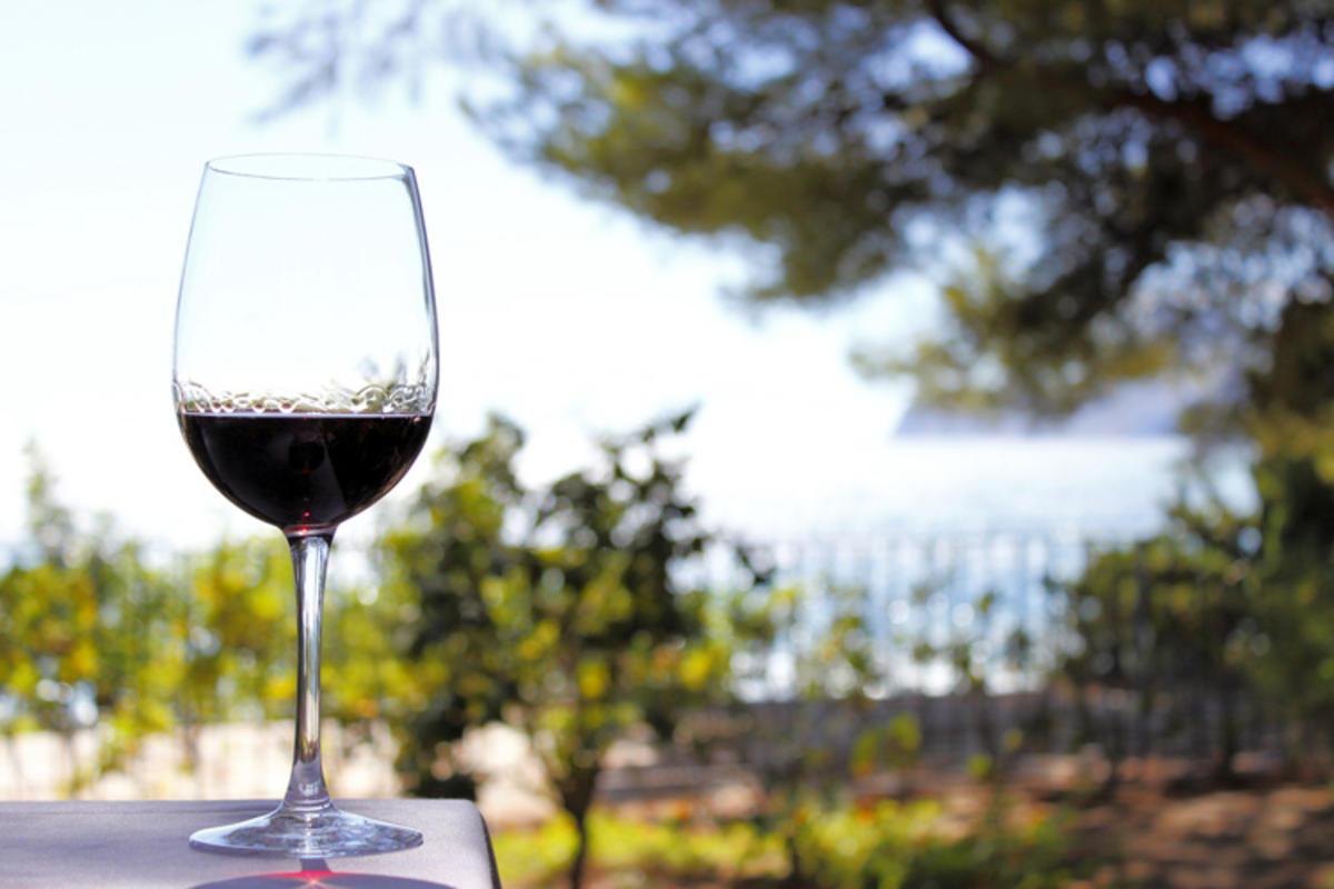 A Spanish Winery // Photo Credit: maxbrotto