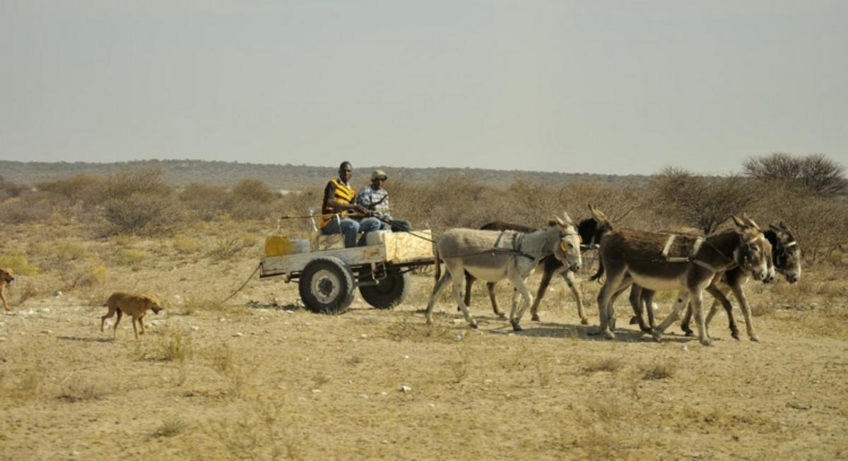 """Transportation in Botswana"" by Pe_Wu via Flickr Creative Commons"