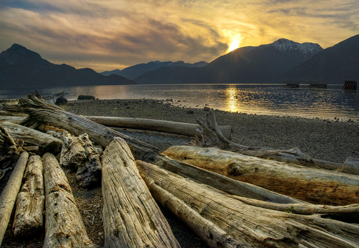"""Logs Along the Coast"" by Rick Schwartz via Flickr Creative Commons"